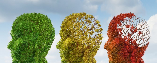 Aging Brain-31489814